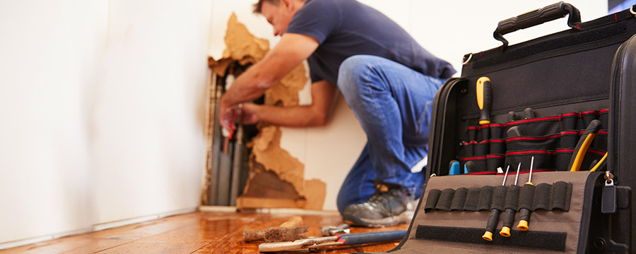 Tips for Choosing a Water Damage Company