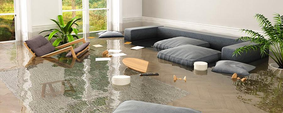 Essential Steps for Flood Restoration