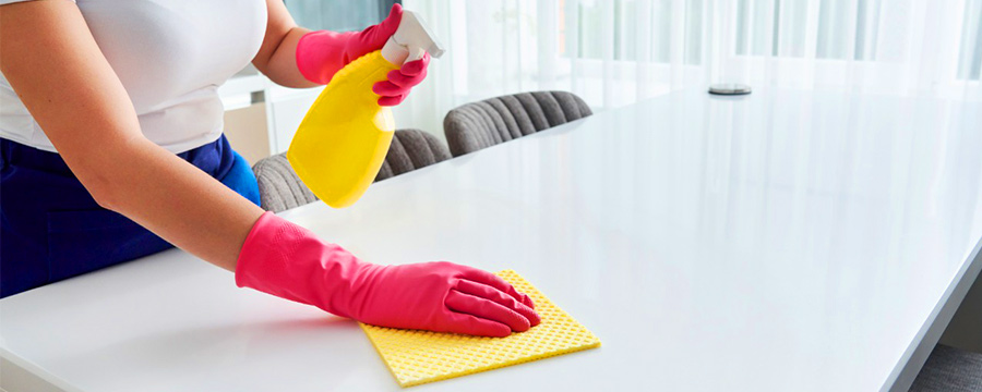 importance of sanitization services