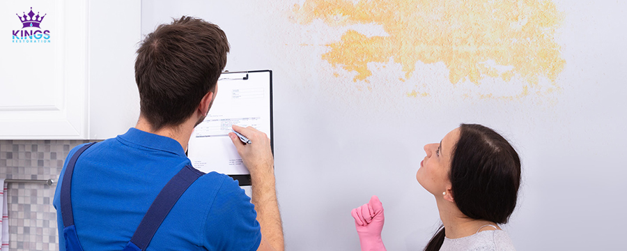 Need a Mold Inspection Service